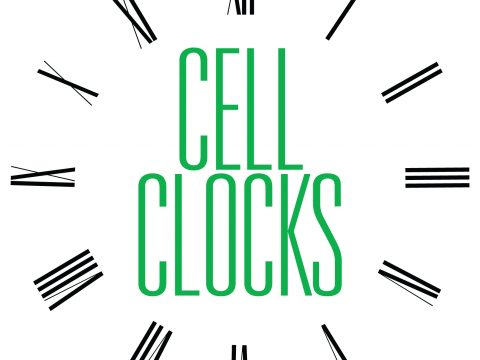 Cell Wall Clocks